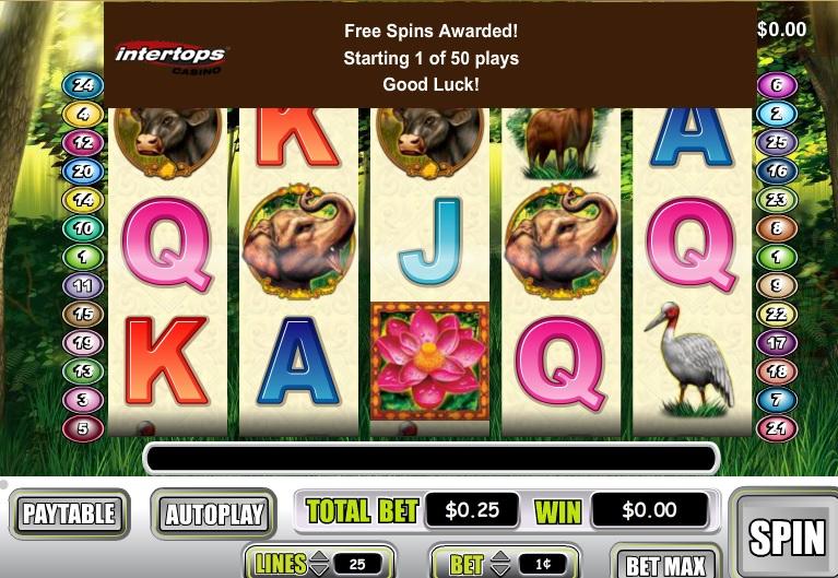 intertops casino classic no deposit bonus code 2019